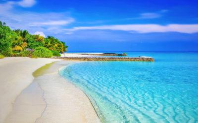 8 administratie vakantie tips